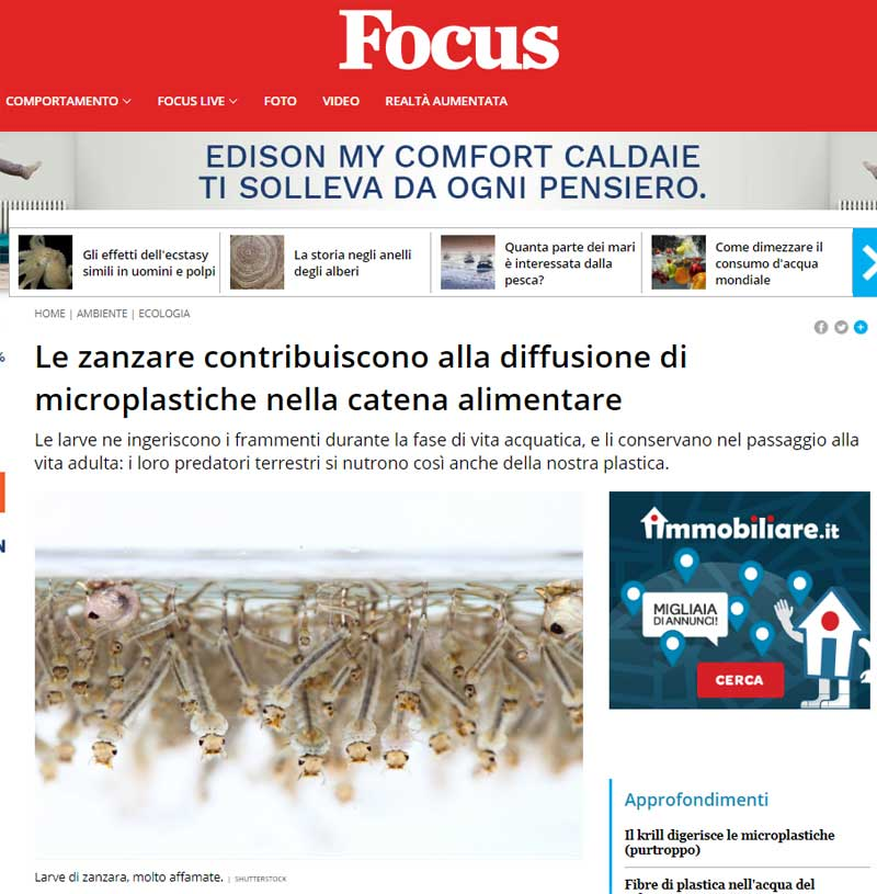 Zanzare diffondono microplastiche