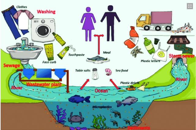 «Quelle microplastiche nei suoli che escono dai depuratori»